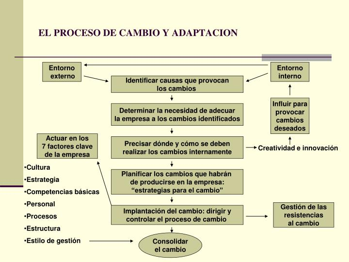 EL PROCESO DE CAMBIO Y ADAPTACION