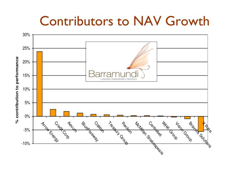 Contributors to NAV Growth