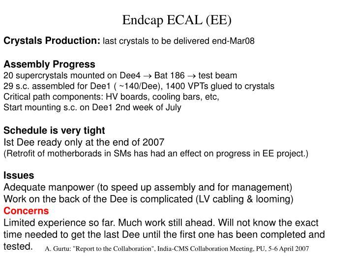 Endcap ECAL (EE)