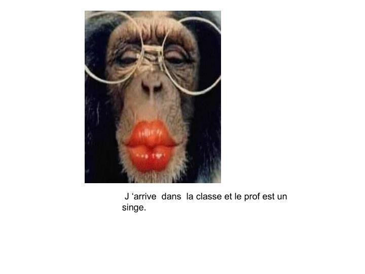 J 'arrive  dans  la classe et le prof est un singe.