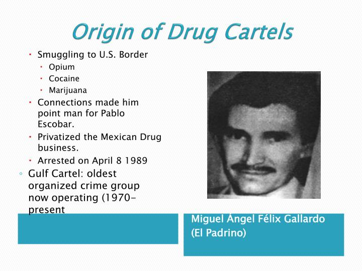 Origin of drug cartels