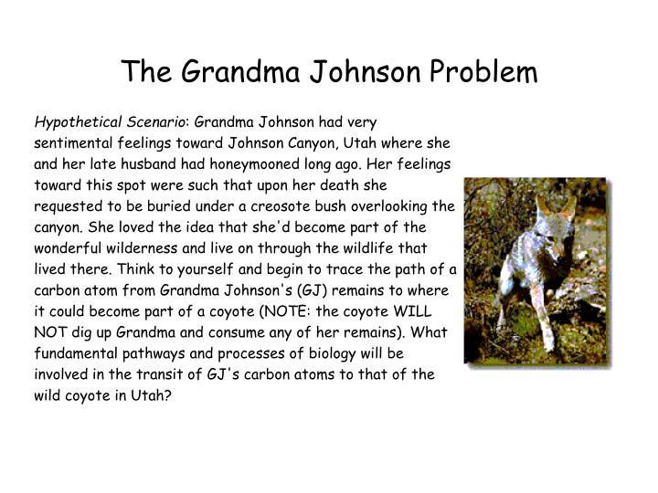 The Grandma Johnson Problem