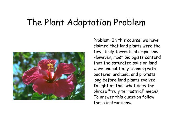 The Plant Adaptation Problem