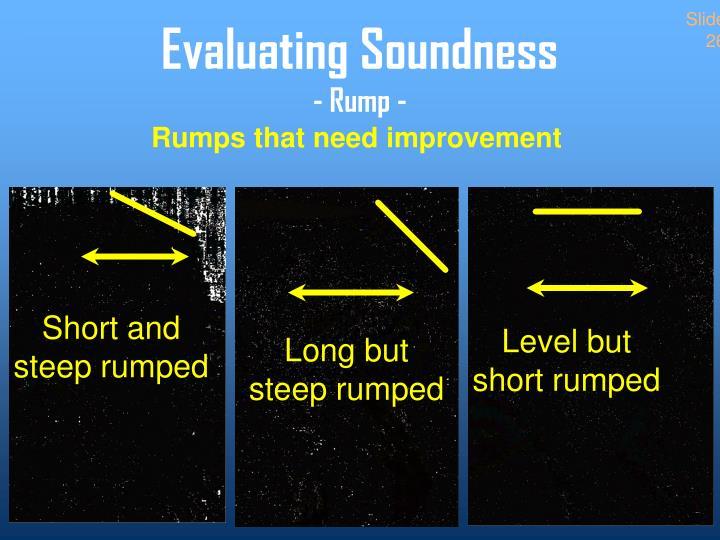 Rumps that need improvement