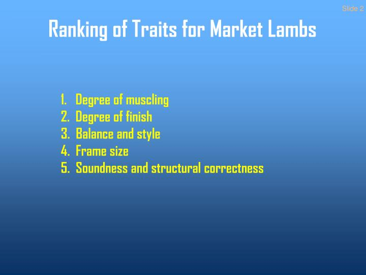 Ranking of traits for market lambs