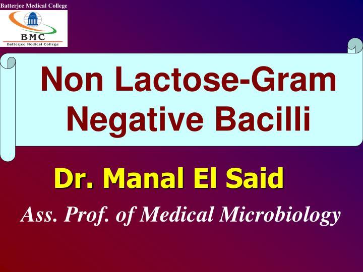 Non Lactose-Gram Negative Bacilli