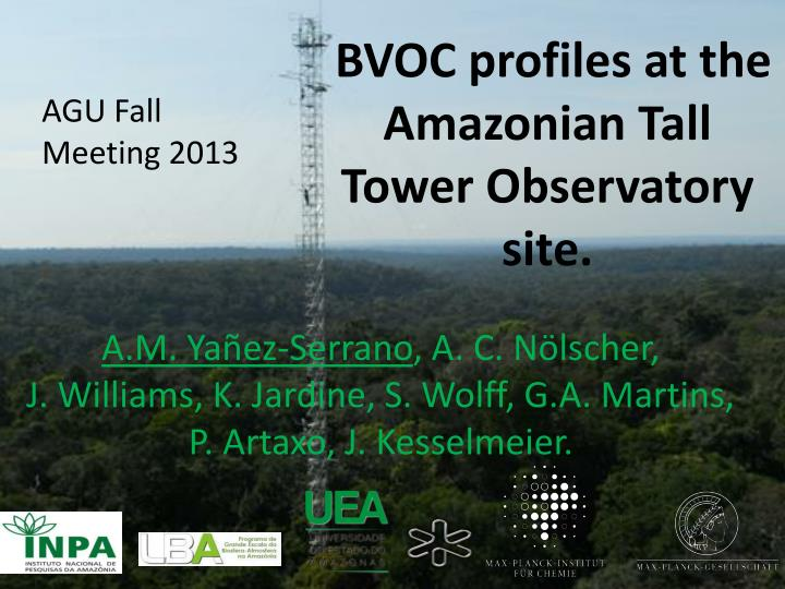 Bvoc profiles at the amazonian tall tower observatory site