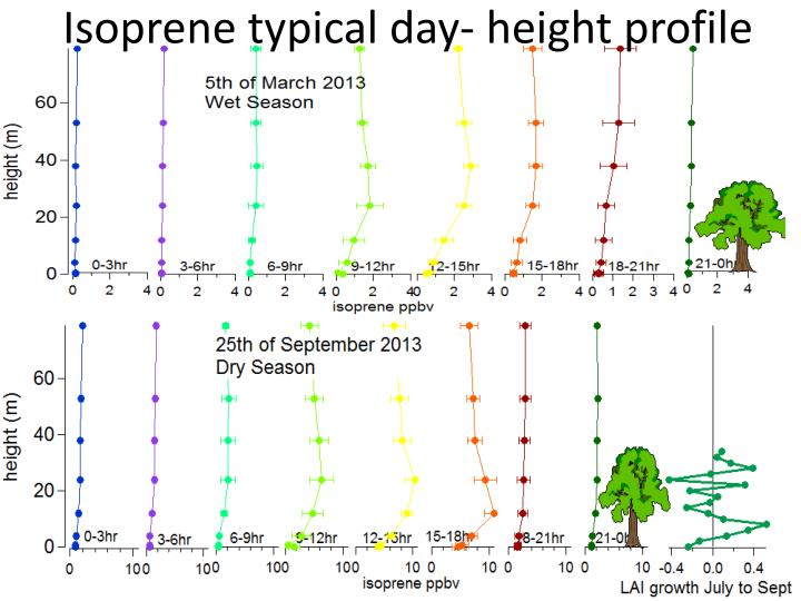 Isoprene typical day- height profile