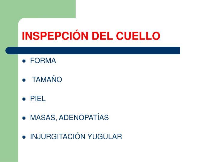 INSPEPCIÓN DEL CUELLO