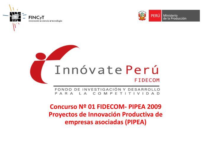 Concurso Nº 01 FIDECOM- PIPEA 2009