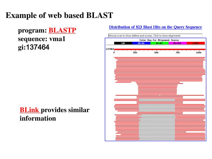 Example of web based BLAST
