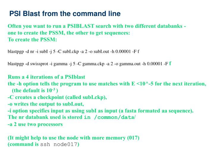 PSI Blast from the command line
