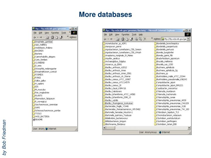 More databases