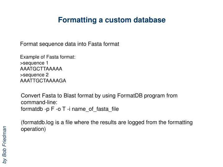 Formatting a custom database