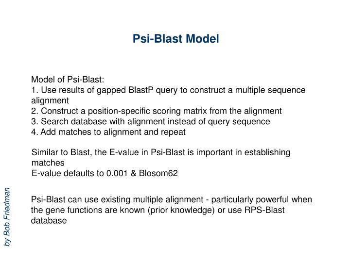 Psi-Blast Model