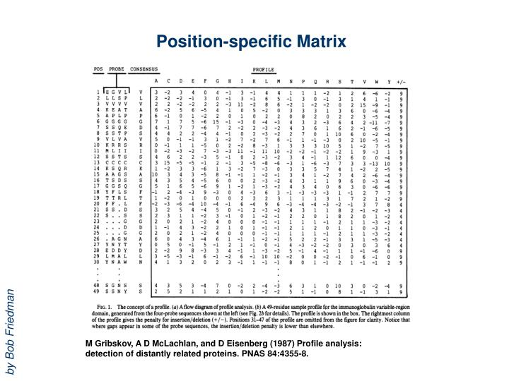 Position-specific Matrix