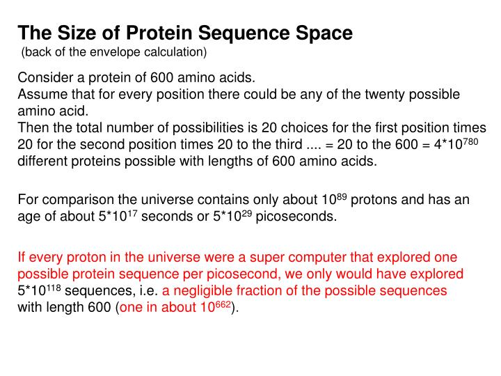 The Size of Protein Sequence Space