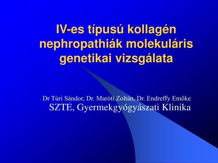 IV-es típusú kollagén nephropathiák molekuláris genetikai vizsgálata