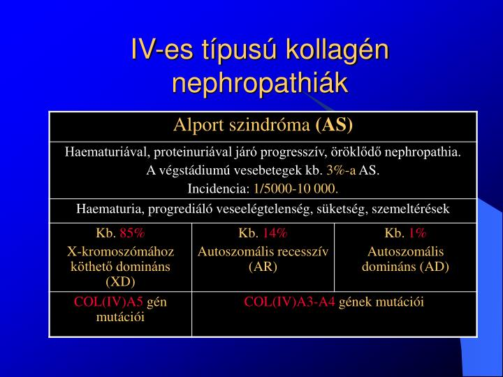 IV-es típusú kollagén nephropathiák
