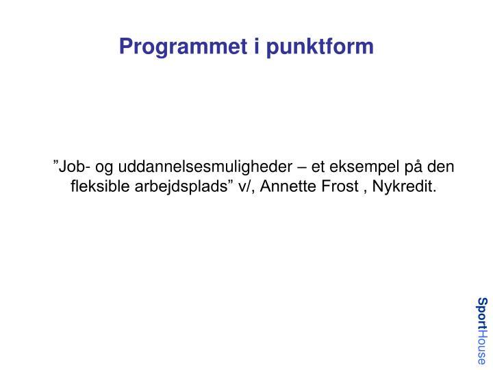 Programmet i punktform
