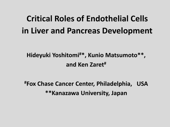 Critical Roles of Endothelial Cells