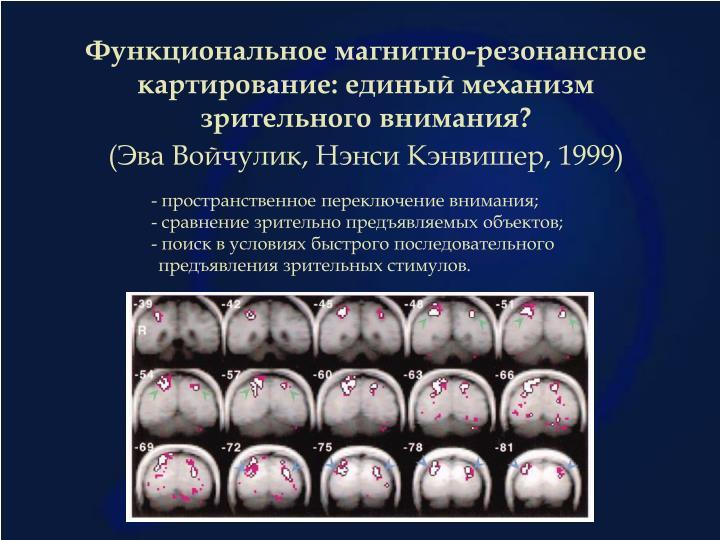 Функциональное магнитно-резонансное картирование: единый механизм зрительного внимания?