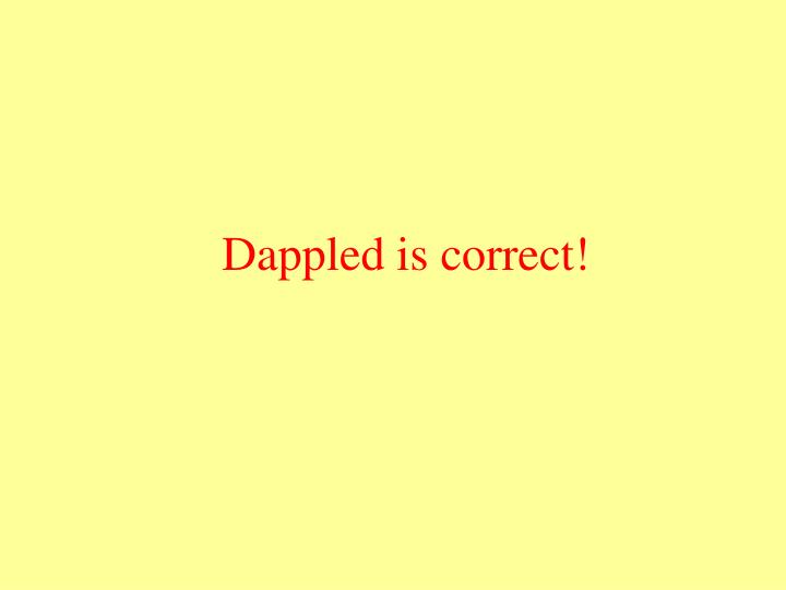 Dappled is correct!
