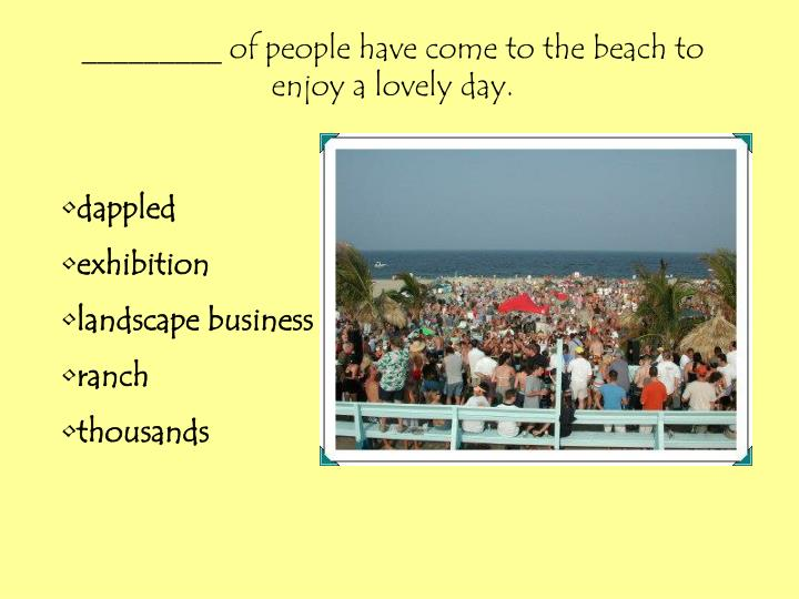 _________ of people have come to the beach to enjoy a lovely day.