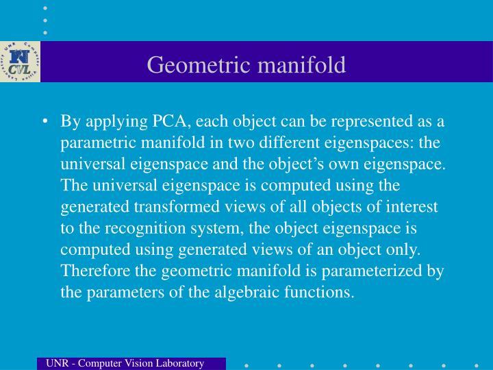 Geometric manifold