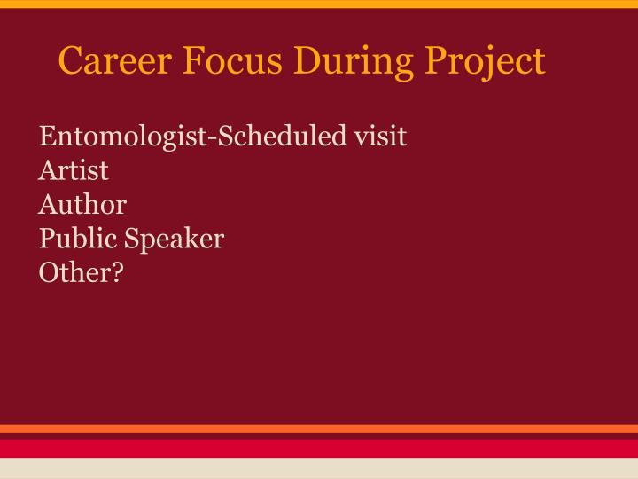 Career Focus During Project