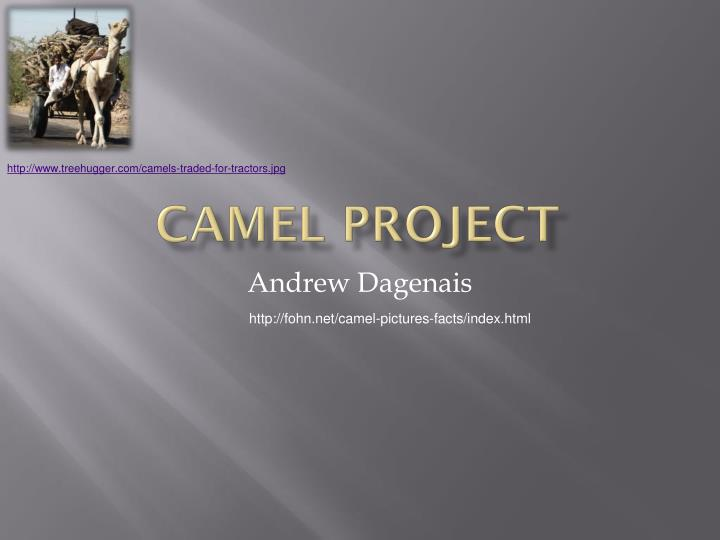 Camel project