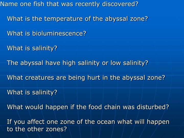 Name one fish that was recently discovered?