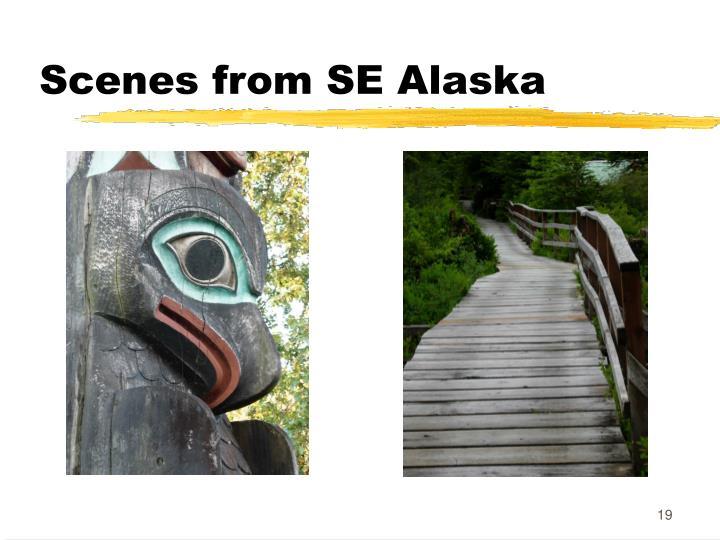 Scenes from SE Alaska