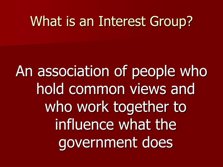What is an Interest Group?