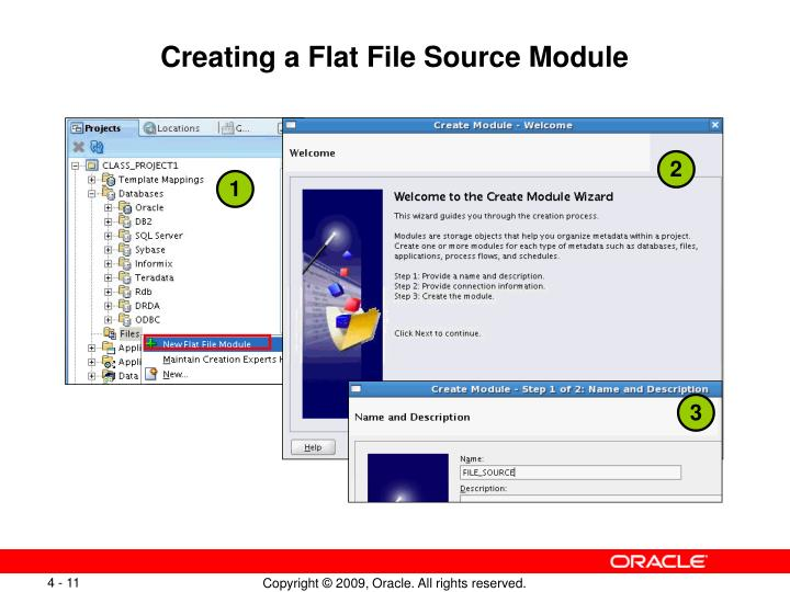 Creating a Flat File Source Module