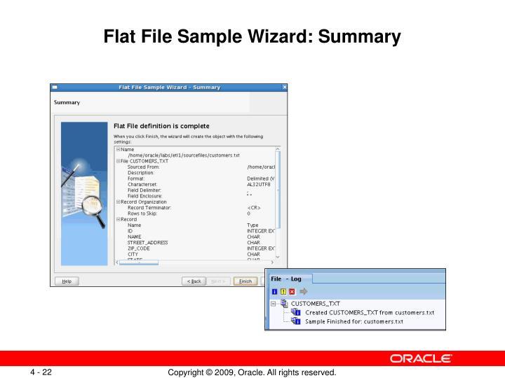Flat File Sample Wizard: Summary