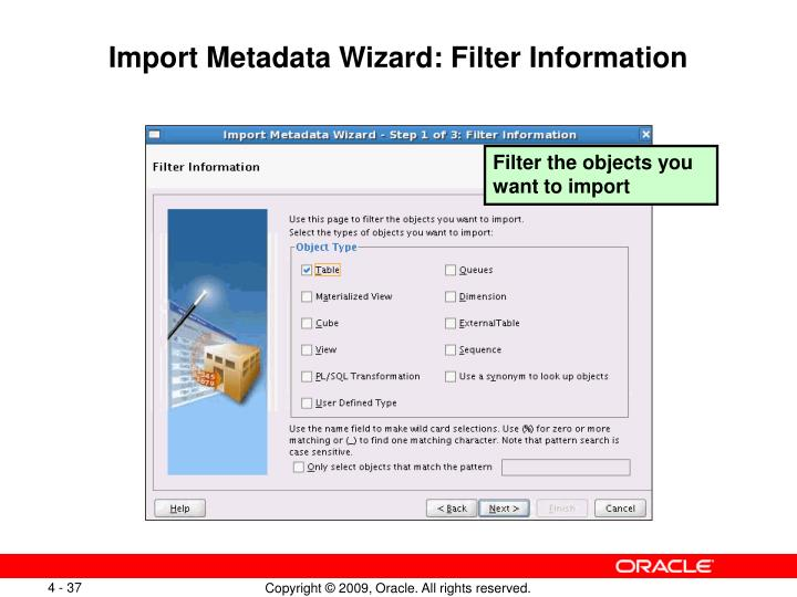 Import Metadata Wizard: Filter Information