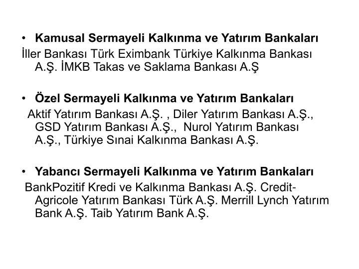 Kamusal Sermayeli Kalkınma ve Yatırım Bankaları