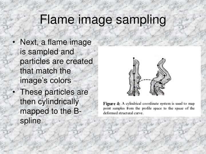 Flame image sampling