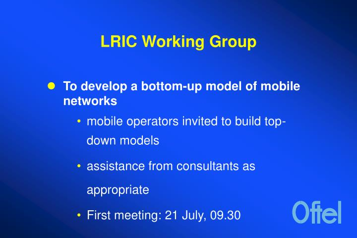 Lric working group