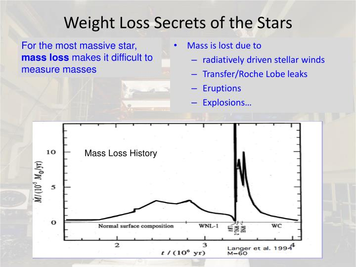 Weight Loss Secrets of the Stars
