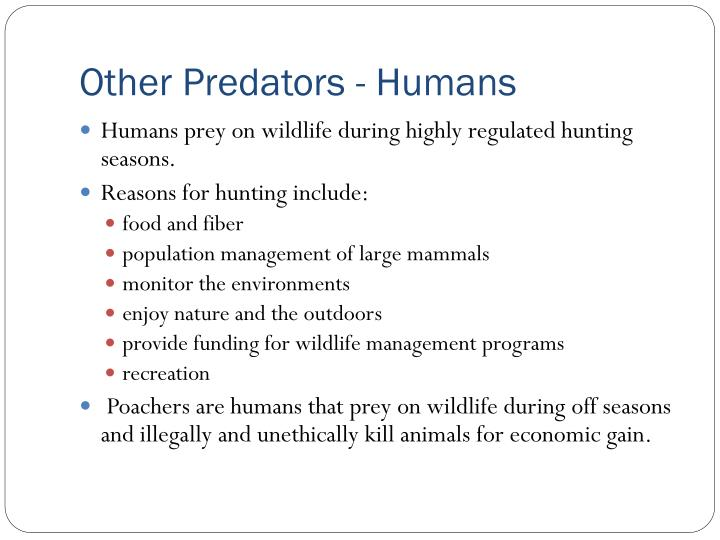 Other Predators - Humans