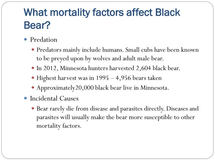 What mortality factors affect Black Bear?