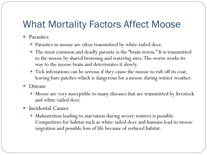 What Mortality Factors Affect Moose