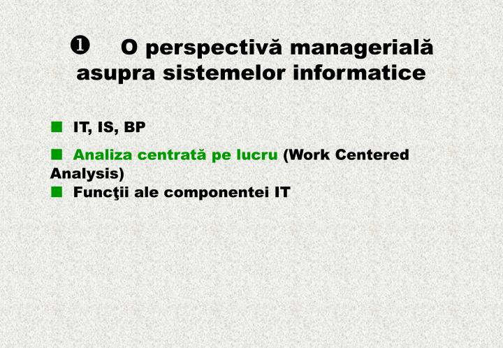 O perspectiv managerial asupra sistemelor informatice