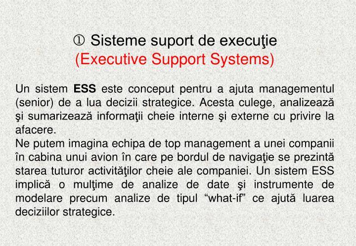 Sisteme suport de execuţie
