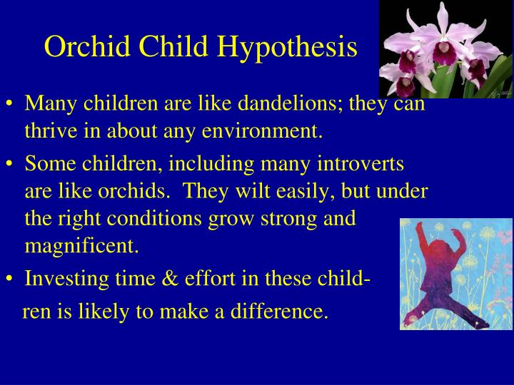 Orchid Child Hypothesis