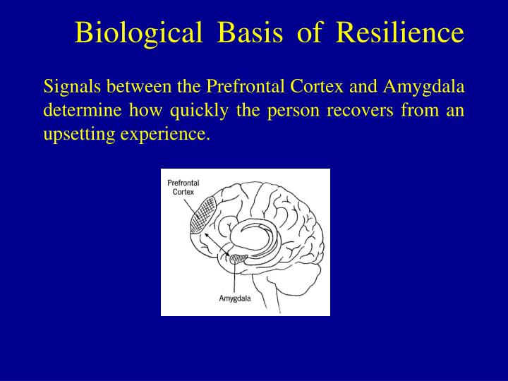 Biological Basis of Resilience