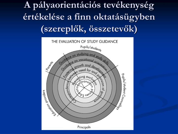 A pályaorientációs tevékenység értékelése a finn oktatásügyben (szereplők, összetevők)