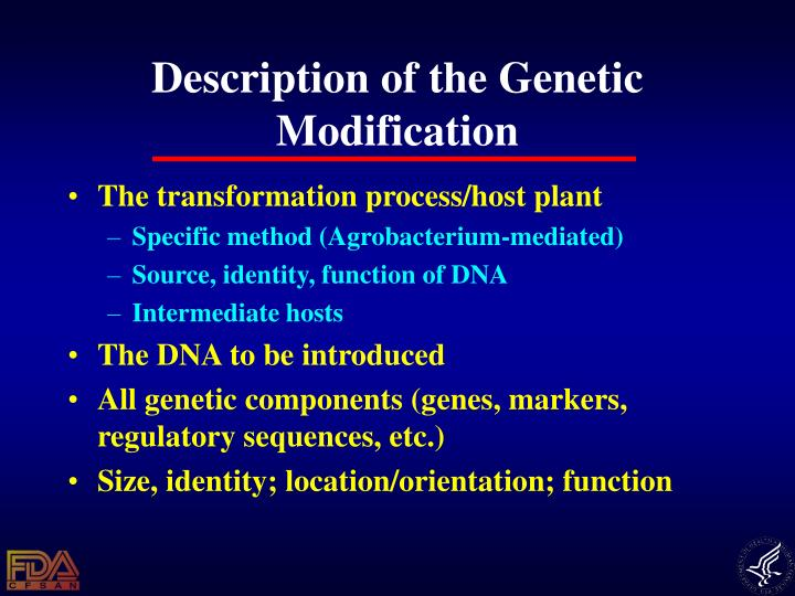 Description of the Genetic Modification